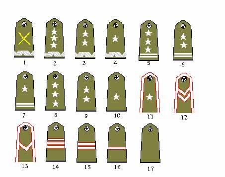 Polish Military Ranks, 1939 - Axis History Forum